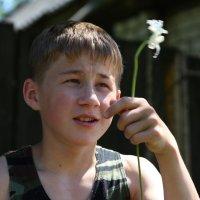 Ты не аленький цветочек :: Алексей Мамаев