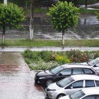 Дождь :: Екатерина Исаенко