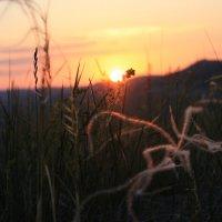 Восход :: Эль Мухаметдинова