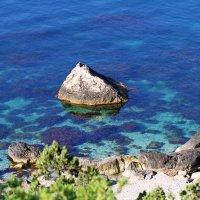 прозрачность моря :: valeriy g_g