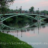 Мост розовым вечером :: Ирина Терентьева