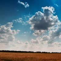 Land of God :: Алексей Савченко