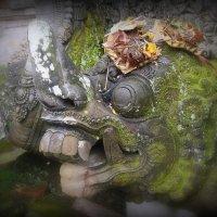 подношеня злым духам о.Бали :: валерий телепов