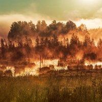 туман :: Ирина Смирнова