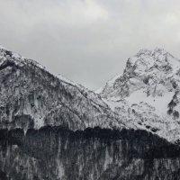 Кавказские горы. :: Наталья Соколова