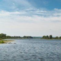 Лето на реке. :: Андрий Майковский