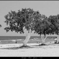 Analipsi Crete Grecce :: DimCo ©