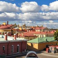 Крыши (Санкт-Петербург) :: Юрий Бичеров