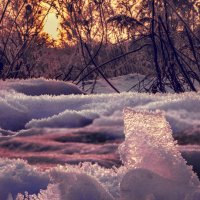 Зима :: Валерий Изотов