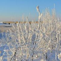 Река Кудьма на окраине Северодвинска. Впереди за мостом Белое море. :: Михаил Поскотинов