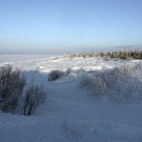 Северодвинск. У Белого моря (2) :: Владимир Шибинский