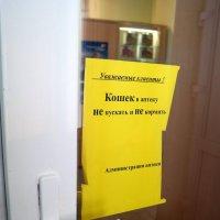 Да сами ешьте свои таблетки!:) :: Андрей Заломленков