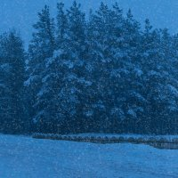 Зимняя дорога в предверии Старого Нового года :: Анатолий Клепешнёв