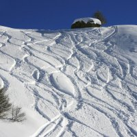 Дорожки сноубордистов :: Мария Самохина
