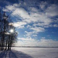 Снежное поле :: Ольга