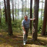 Вид на озеро :: Александр Генрихович Завьялов
