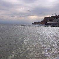 Холодное январское море ( 2 ) :: Людмила