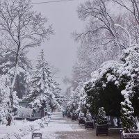 Зимняя сказка 2 :: Kamyshlov Victor
