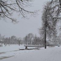 Январь. :: zoja