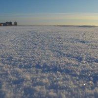 Река Кудьма, она впадает в Белое море, море сзади, а впереди окраина города Северодвинска. :: Михаил Поскотинов