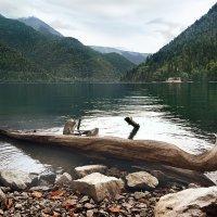 Абхазия озеро Рица :: Денис Масленников