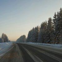 Морозное утро :: leo yagonen