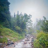 Туман над речкой :: Bekzat Assylkhan