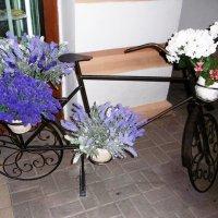 Кашпо - велосипед :: татьяна