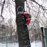 Дед Мороз живёт по ул. 3-е почтовое город Люберцы. :: Ольга Кривых