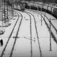 Стрелочник! :: Владимир Шошин