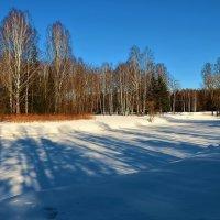 Круглозальные пруды... :: Sergey Gordoff