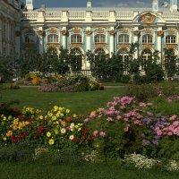 Висячий садик рядом с Екатерининским дворцом :: Наталья