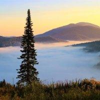 На восходе солнца :: Сергей Чиняев