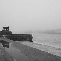 Городок в тумане.. :: tipchik