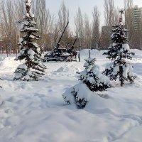 Морозный день :: Александр Алексеев