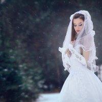 Холодная нежность :: Виталий Любицкий