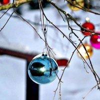 Новогодние шары. :: Михаил Столяров