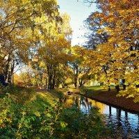 Любимое место... :: Sergey Gordoff