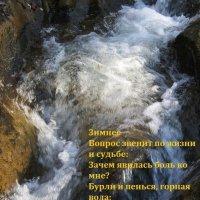 АРТ поэзия  воды :: Евгений БРИГ и невич