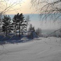 Зимние прогулки :: Вера Андреева