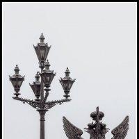 туман :: Tajmer Aleksandr