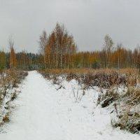 Ранняя зима. :: Анатолий Борисов