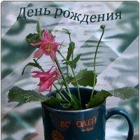 Событие местного значения:) :: Нина Корешкова