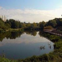 Московские пруды.Сентябрь :: анна нестерова