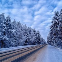 Зимняя дорога :: Геннадий Ивкин