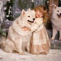 Новогодняя сказка :: татьяна иванова