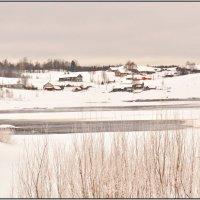 Деревенька Павловская на берегу реки Онега. :: Марина Никулина