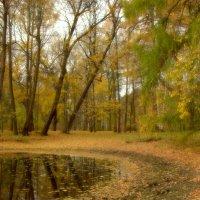 Осенним днём... :: Наталья