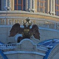 Орел на  балконе  Храма. :: Виталий Селиванов