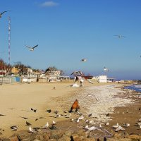 зимний пляж :: Александр Корчемный